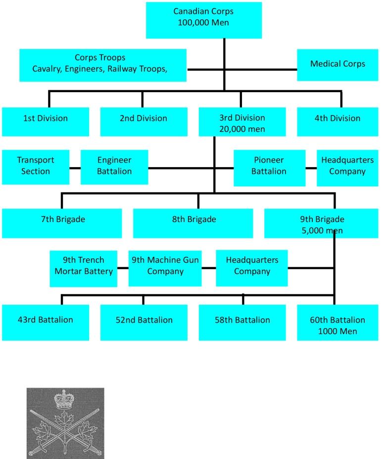 Cdn Corps Diagram